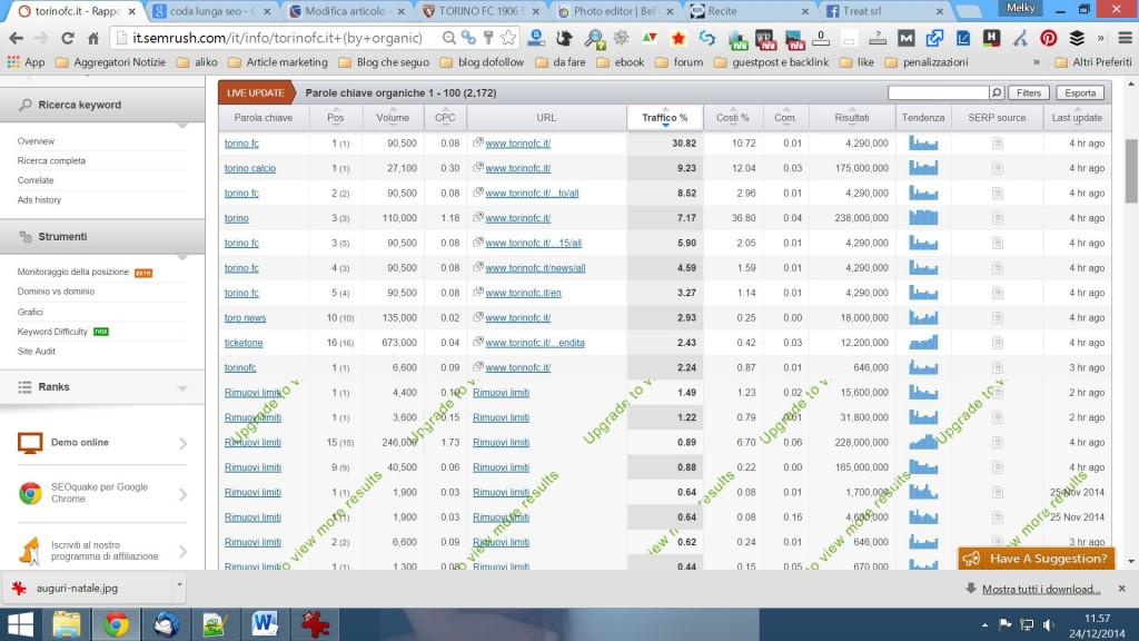 semrush-rapporto-keywords