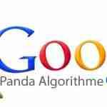 Panda Update 4.1 : evitiamo le penalizzazioni